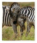 Zebra Hug Fleece Blanket