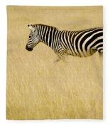 Zebra In Grasses Fleece Blanket