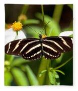 Zebra Longwing And Flowers Fleece Blanket