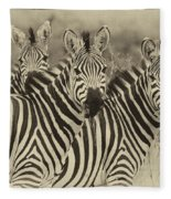 Zebra Trio Fleece Blanket