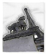 # 4 Paris France Fleece Blanket