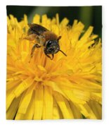 A Bee In A Dandelion Fleece Blanket