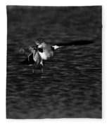American Avocet Dance  Fleece Blanket