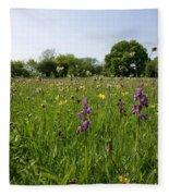 Ancient Hay Meadow Fleece Blanket