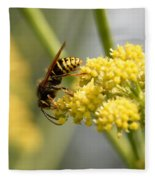 Common Wasp Fleece Blanket