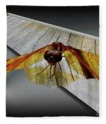 Eastern Amber Dragonfly 3d Fleece Blanket