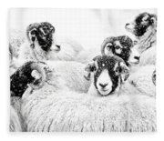 In Winters Grip Fleece Blanket