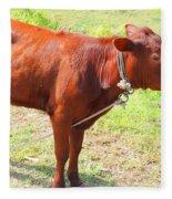 Jamaican Cow Fleece Blanket