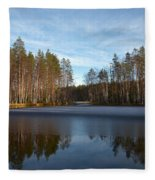 Liesilampi 5 Fleece Blanket