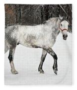 Light  Grey Horse Goes On A Winter Glade  Fleece Blanket
