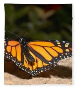 Monarch 2 Fleece Blanket