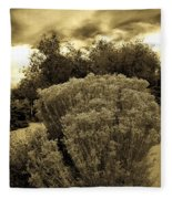 Shrub In Santa Fe Fleece Blanket