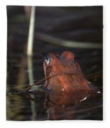 The Common Frog 2 Fleece Blanket