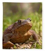 The Common Toad 3 Fleece Blanket