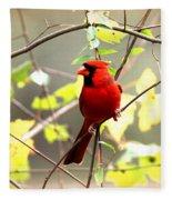 0138 - Cardinal Fleece Blanket