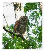 0298-001 - Barred Owl Fleece Blanket