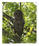 0313-010 - Barred Owl Fleece Blanket