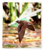 0518 - Northern Rough-winged Swallow Fleece Blanket