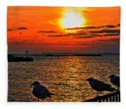 06 Sunset Series Fleece Blanket
