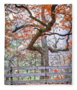 0981 Fall Colors At Starved Rock State Park Fleece Blanket