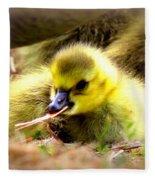 0983 - Canada Goose Fleece Blanket