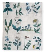 Lithography Of Common Flowers  Fleece Blanket