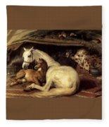 10234 Edwin Henry Landseer Fleece Blanket