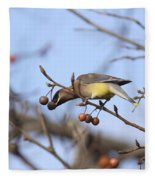 4427 - Cedar Waxwing Fleece Blanket