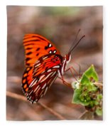 4534 - Butterfly Fleece Blanket