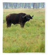 African Buffalo Fleece Blanket