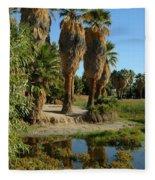 Agua Caliente Park Fleece Blanket