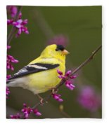 American Goldfinch In Redbud Fleece Blanket