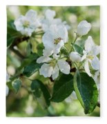 Apple Flowers Fleece Blanket