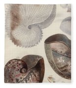 Aquatic Animals - Sea - Shells - Composition - Alien - Wall Art  - Interior Decoration  Fleece Blanket
