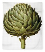 Artichoke, 1613 Fleece Blanket