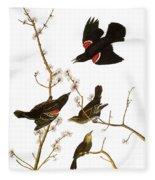 Audubon: Blackbird, (1827) Fleece Blanket