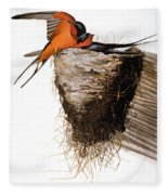 Audubon: Swallow Fleece Blanket