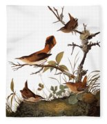 Audubon: Wren Fleece Blanket