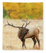 Autumn Bull Elk Bugling Fleece Blanket