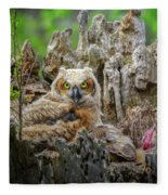 Baby Great Horned Owl Fleece Blanket