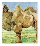 Bactrian Camel, Endangered Species Fleece Blanket