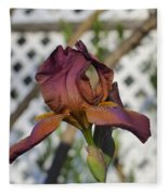 Beautiful Iris Fleece Blanket
