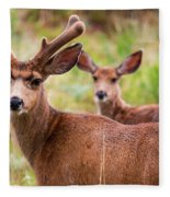 Beautiful Mule Deer Herd Fleece Blanket