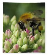 Bee Fleece Blanket