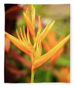 Bird Of Paradise Plant In The Garden. Fleece Blanket