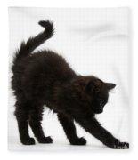 Black Kitten Stretching Fleece Blanket