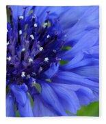 Blue Cornflower Fleece Blanket