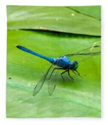 Blue Dragonfly On Lily Pad Fleece Blanket