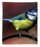 Blue Tit Fleece Blanket
