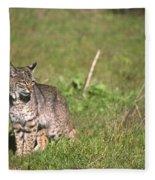 Bobcat - Wildcat Beach Fleece Blanket